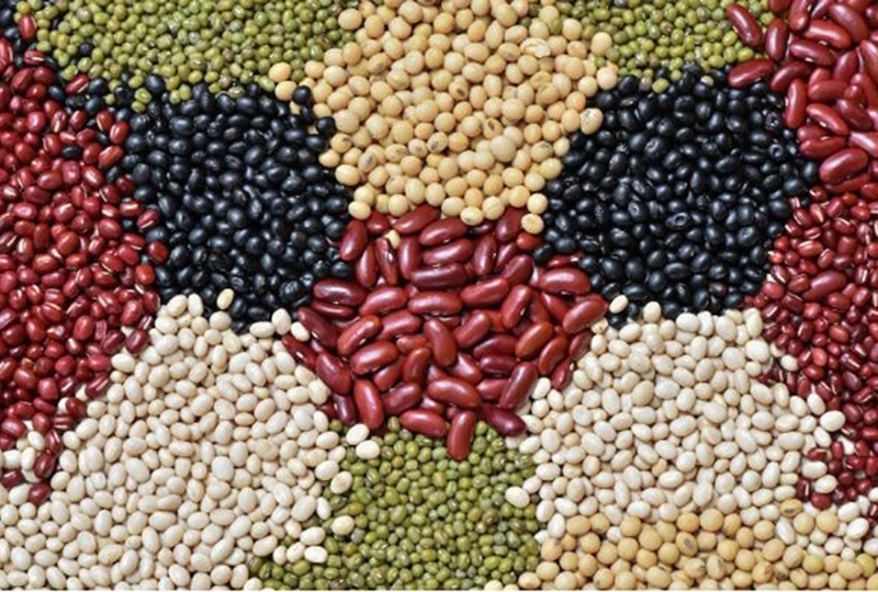 Beans and legumes are wonderful for dieters
