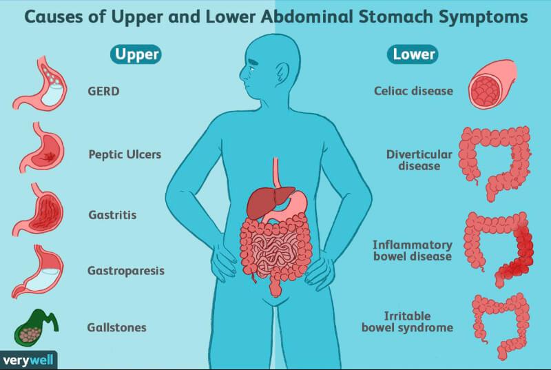Improved stomach related framework